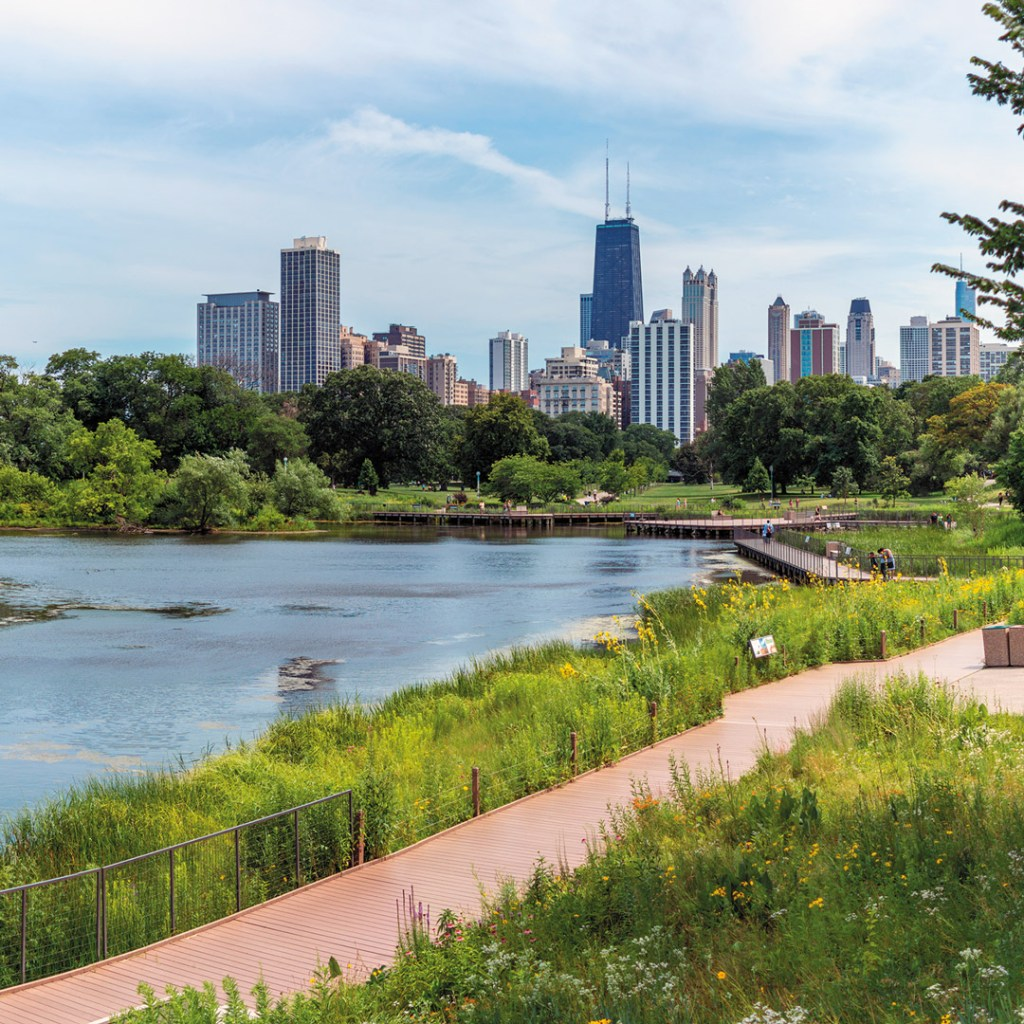 walkway alongside the water in a park with a view of the Chicago skyline