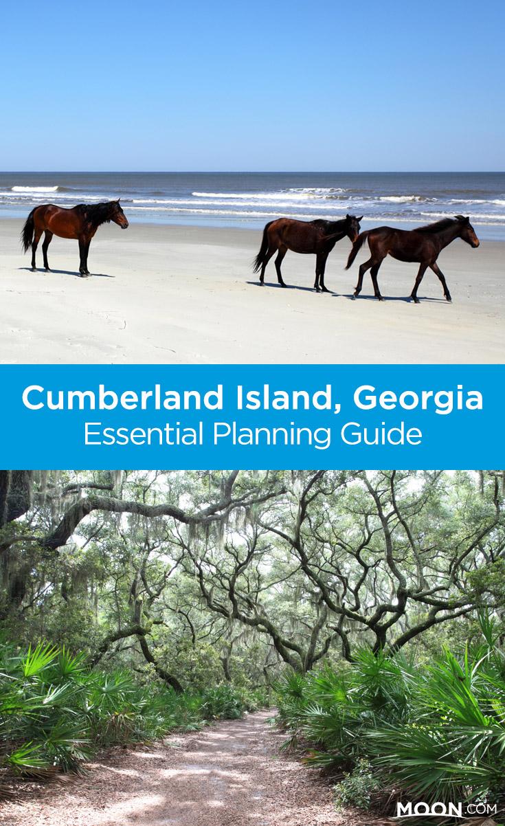 cumberland island pinterest graphic