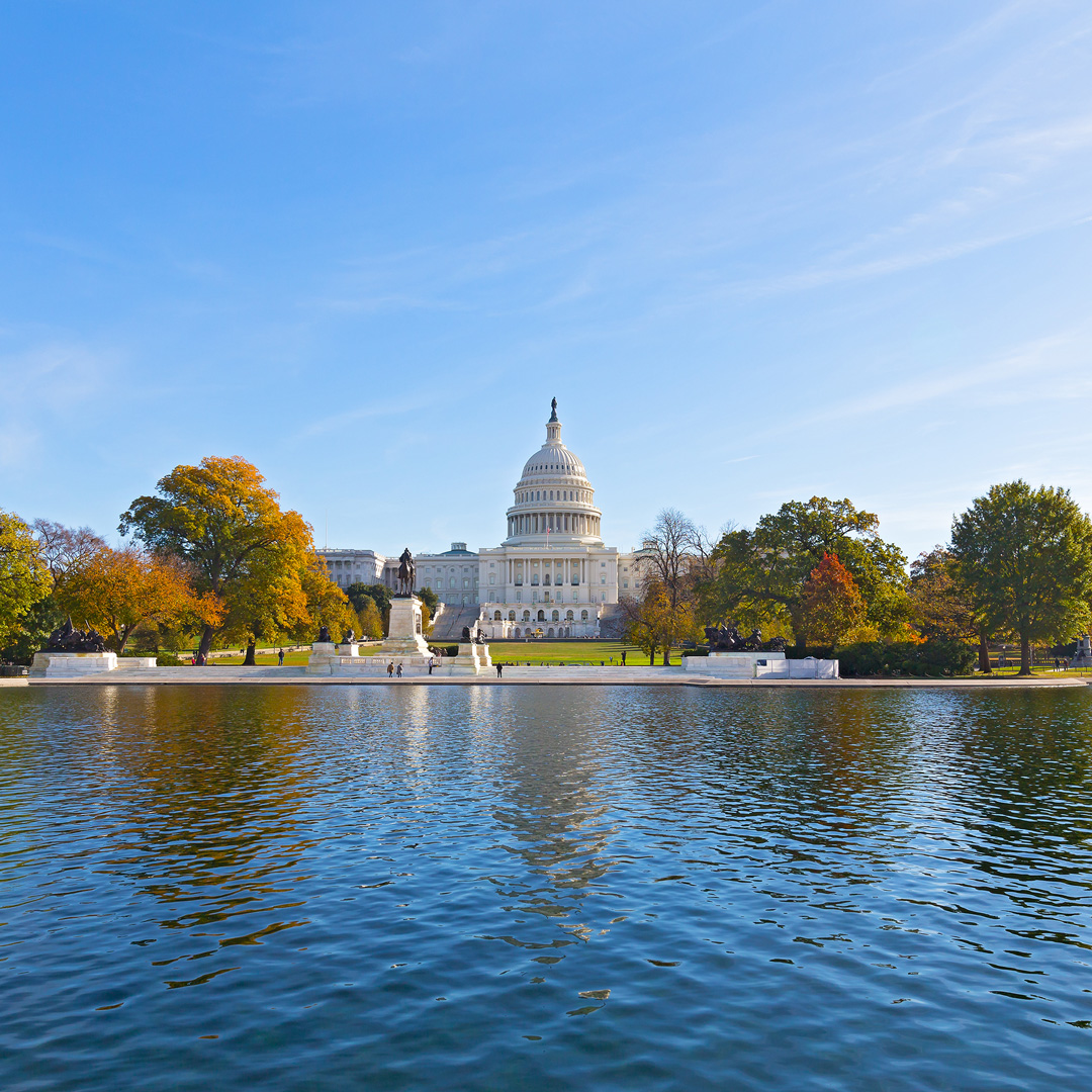 capitol building reflected in a pool of water surrounded by trees in fall