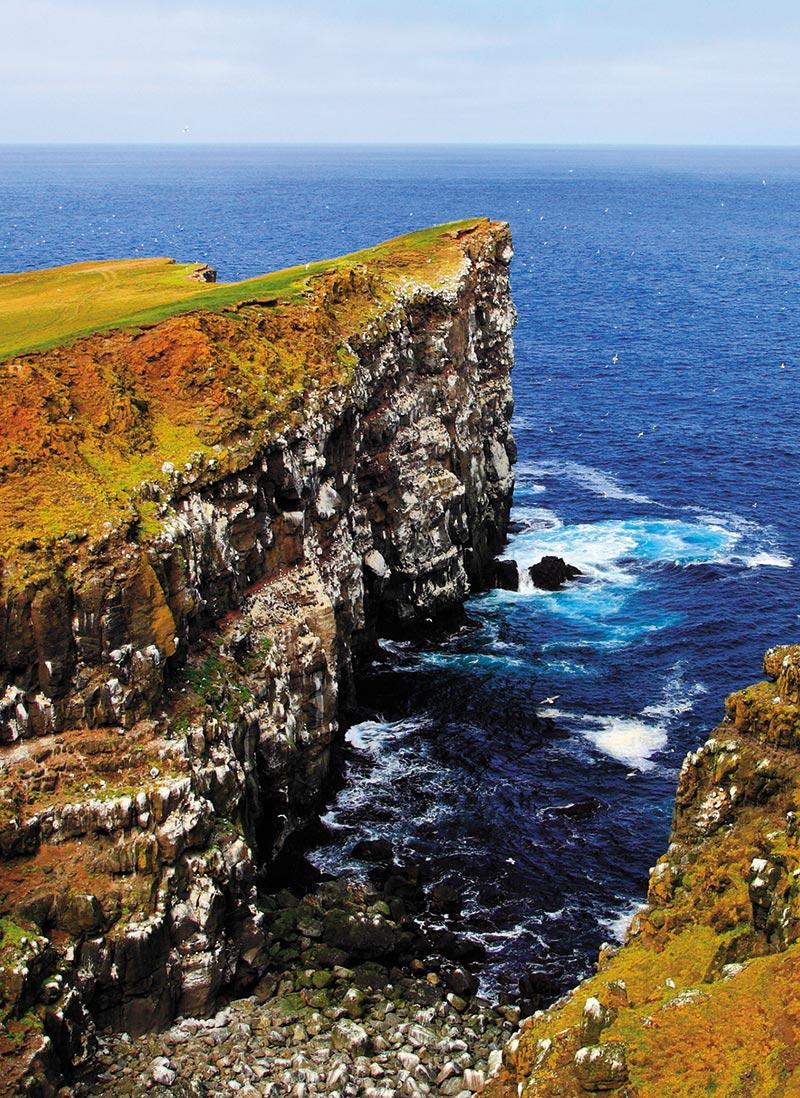 The cliffs of Grímsey.