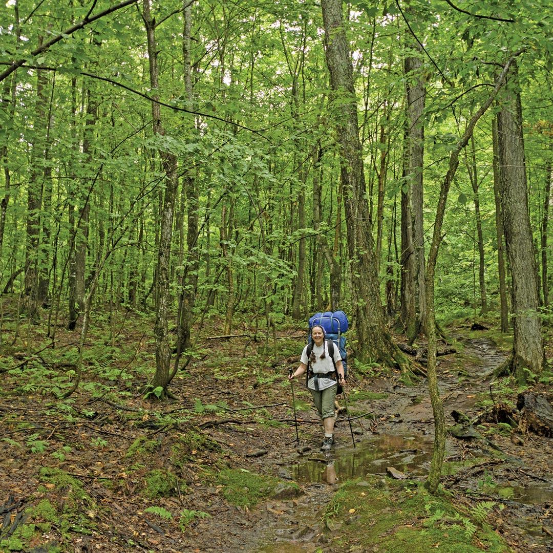 female hiker in a forest in Michigan