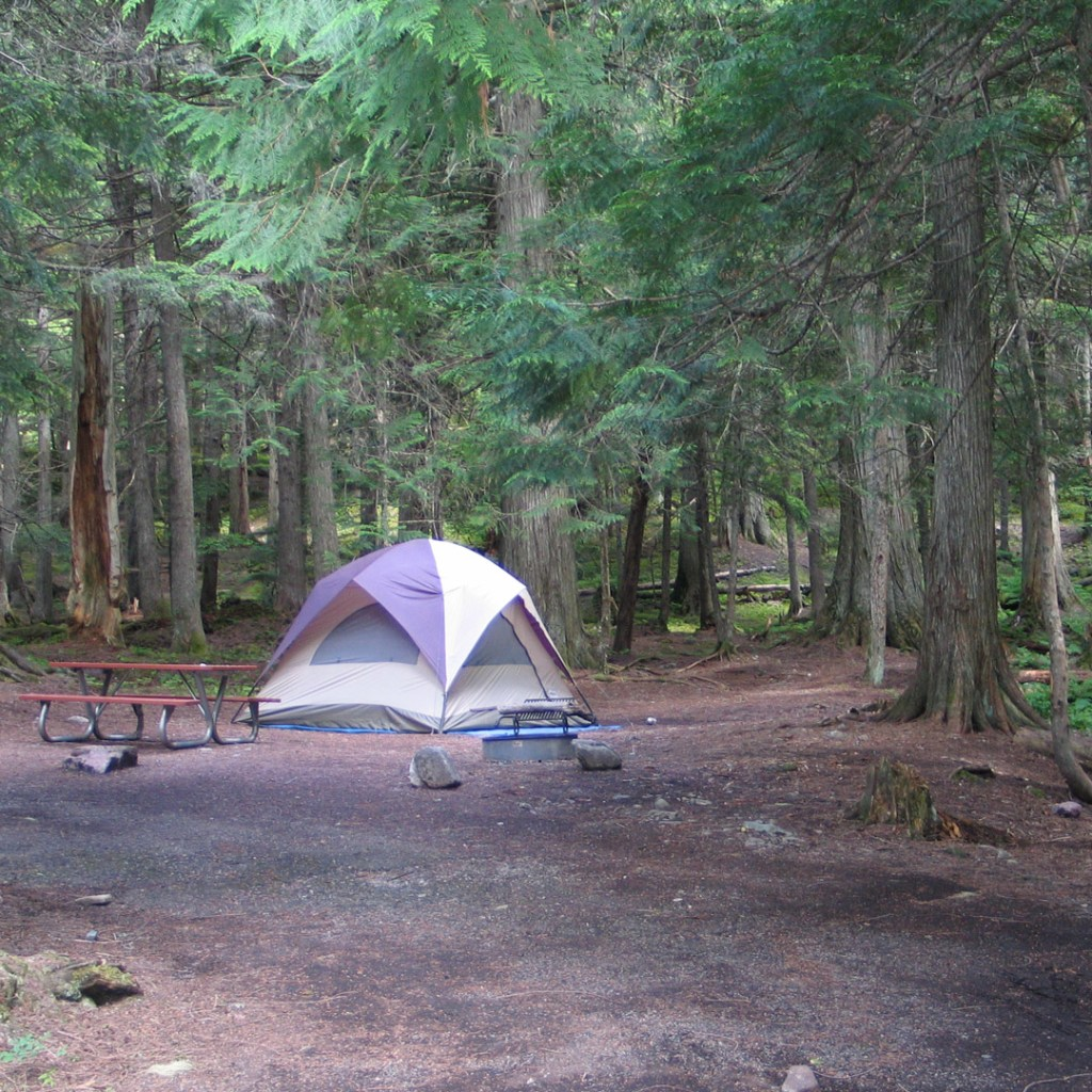 single tent next to a picnic table in the woods