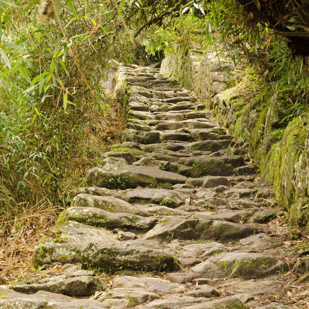 Incline of Inca Trail to Machu Picchu