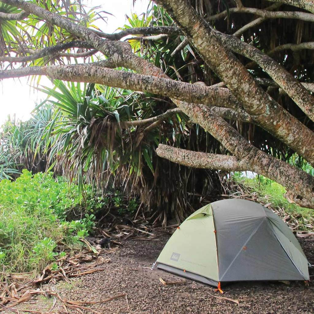 Pitch a tent in Kipahulu. Photo © Kyle Ellison.