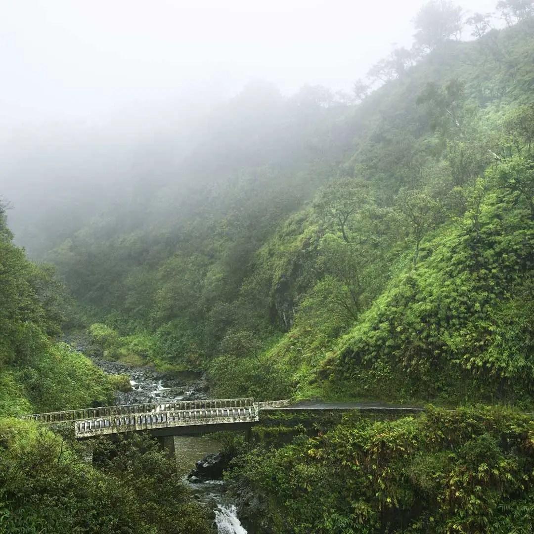 A bridge in the mist of Hana.