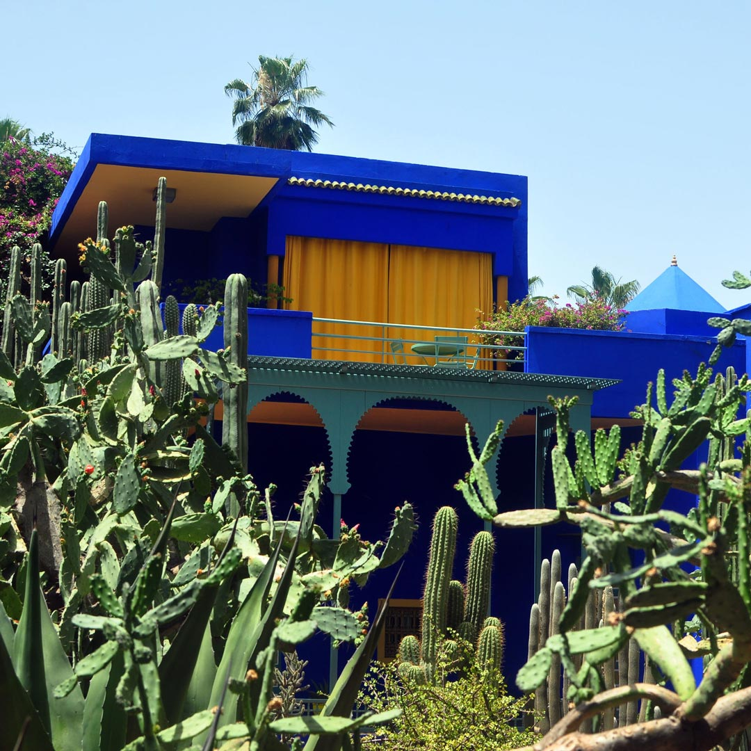 view of cactus surrounding a bright blue building in Marrakech