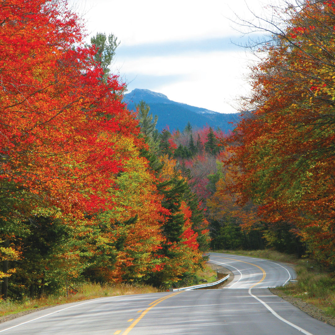 brightly colored trees surround a winding highway in fall