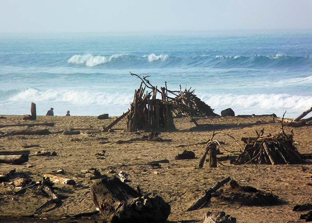 Driftwood structures on San Gregorio State beach. Photo © Elizabeth Linhart Veneman