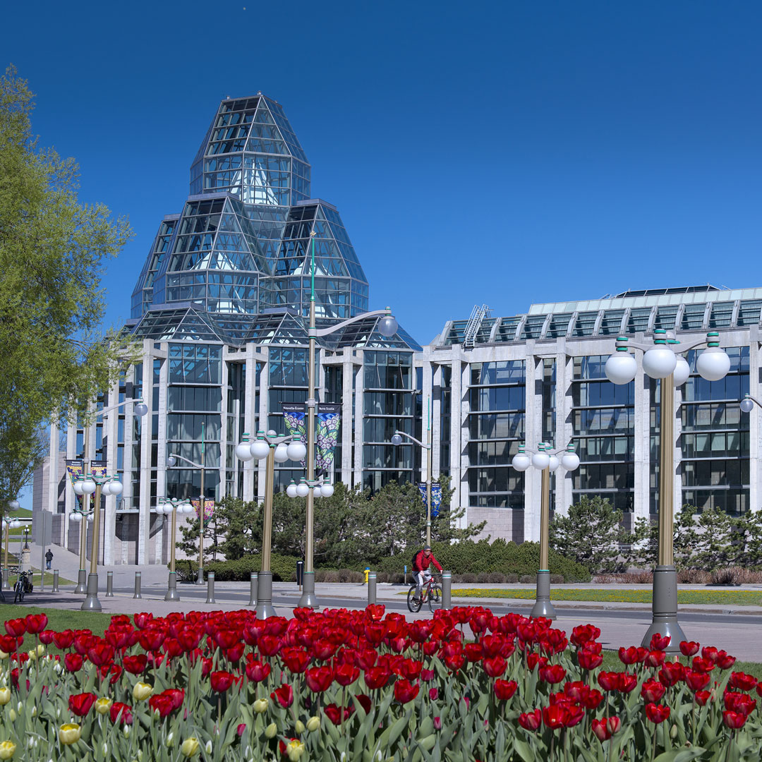 tulips blooming in front of the National Gallery of Canada