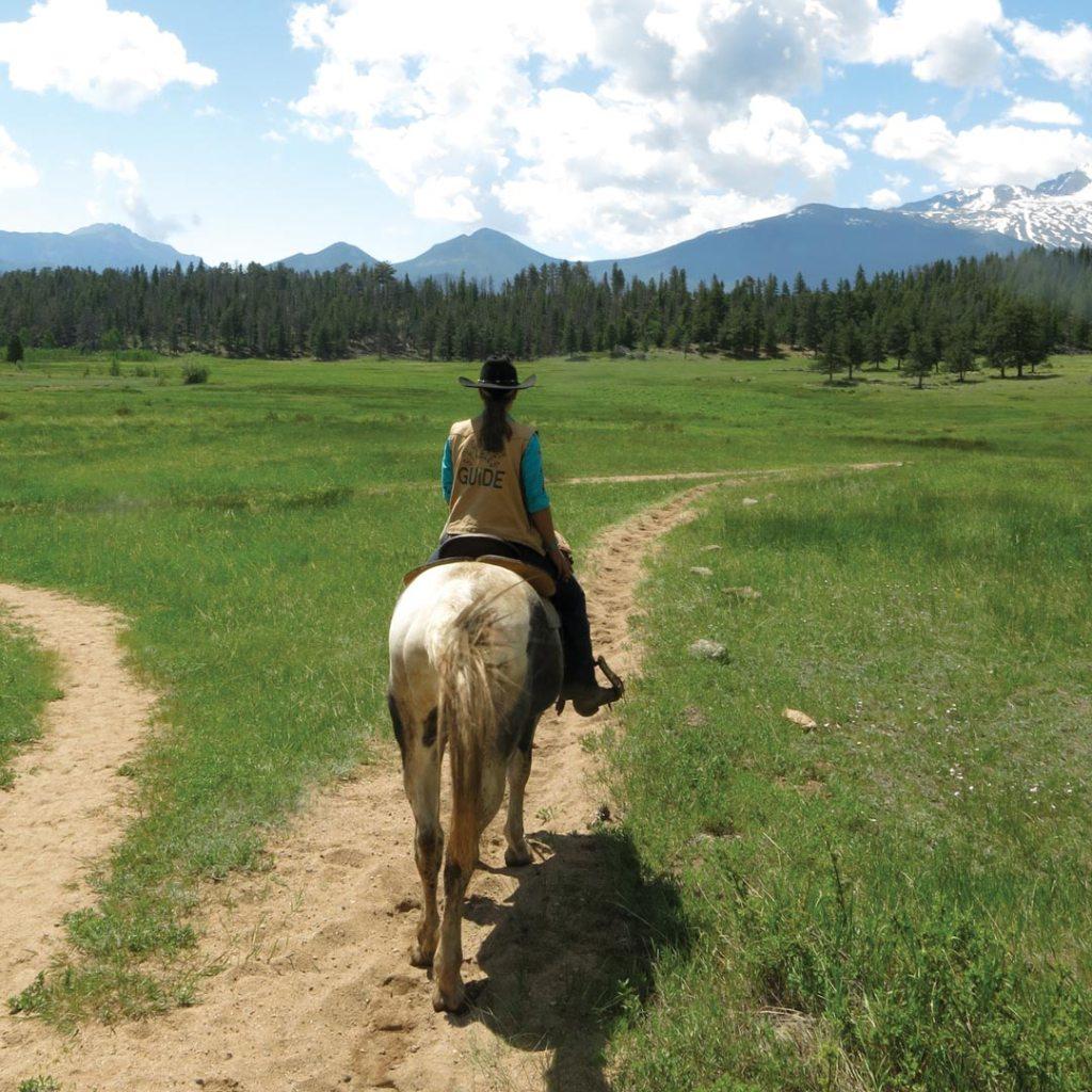 girl riding a horse through a meadow