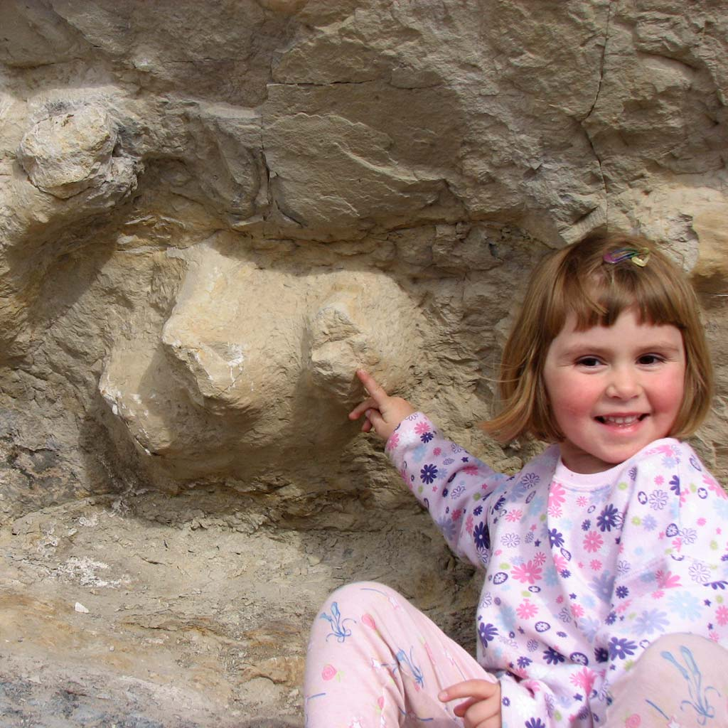 A young girl dressed in pink looks excited by dinosaur prints