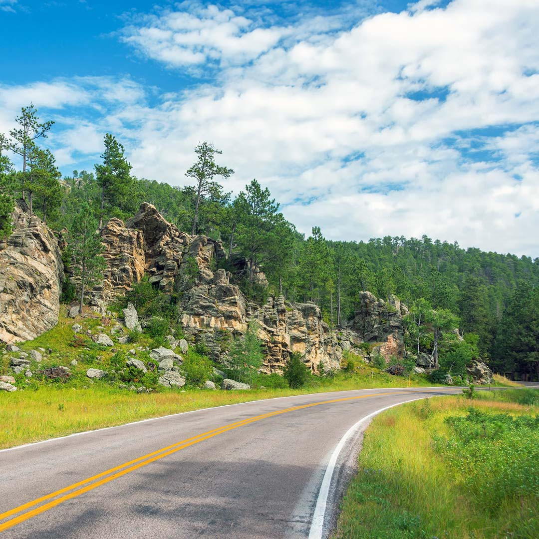 Driving through Custer State Park, South Dakota.