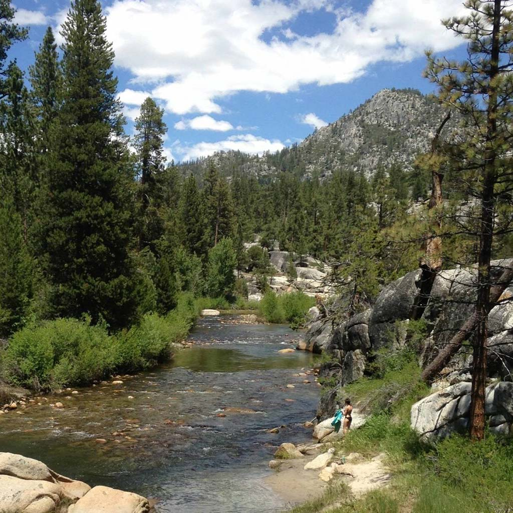 A creek runs through boulders and green trees, a mountain and blue sky in the background