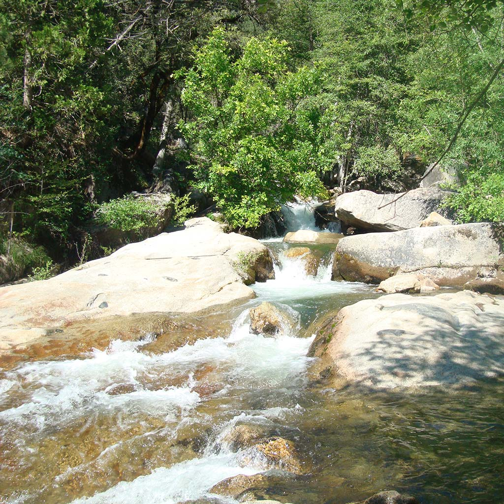 A stream flows over rocks, forming mini waterfalls and pools on its way to Bass Lake