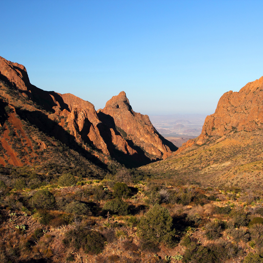 brush and red earth of the Chisos Mountains under a clear blue sky