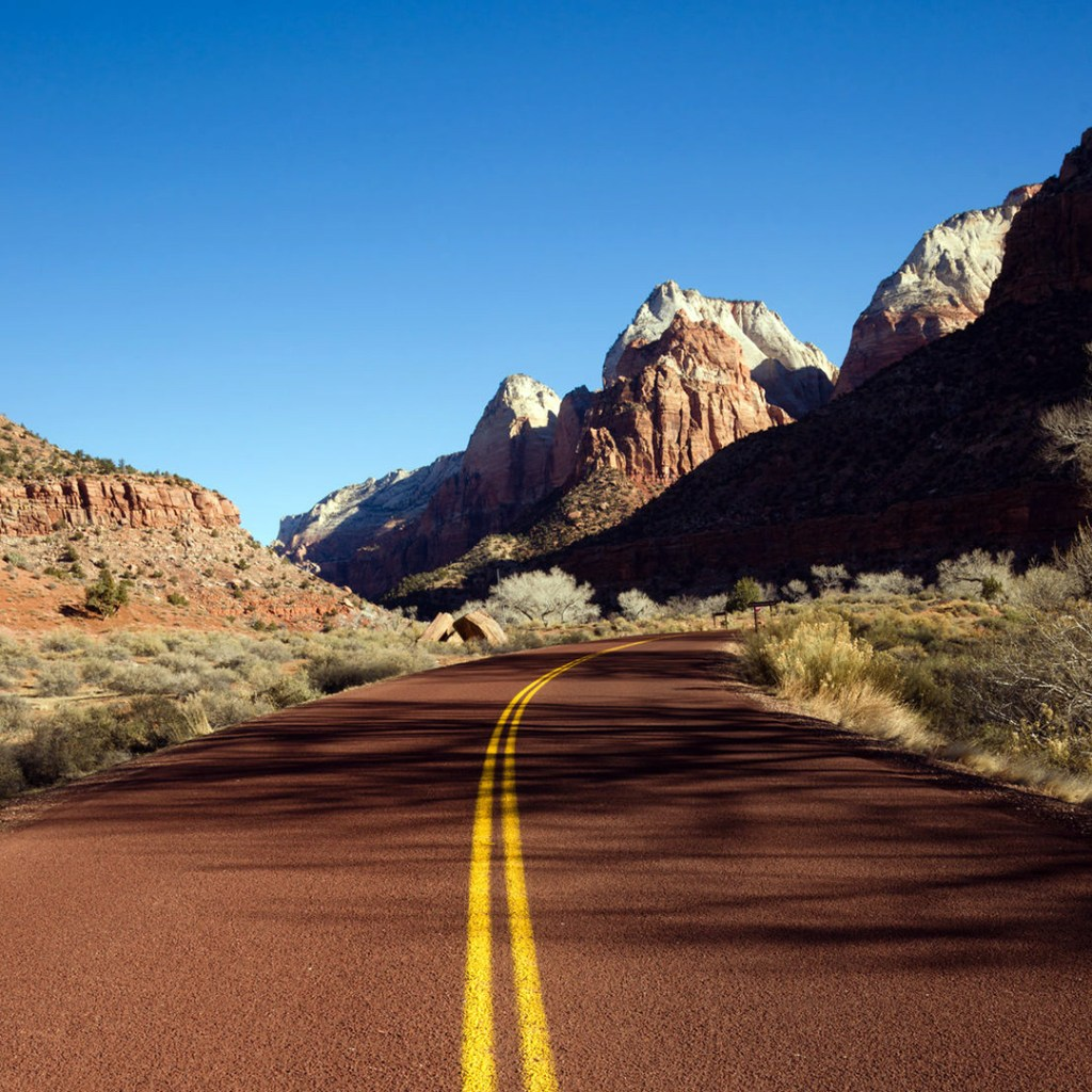 road leading through rocky outcroppings in zion national park