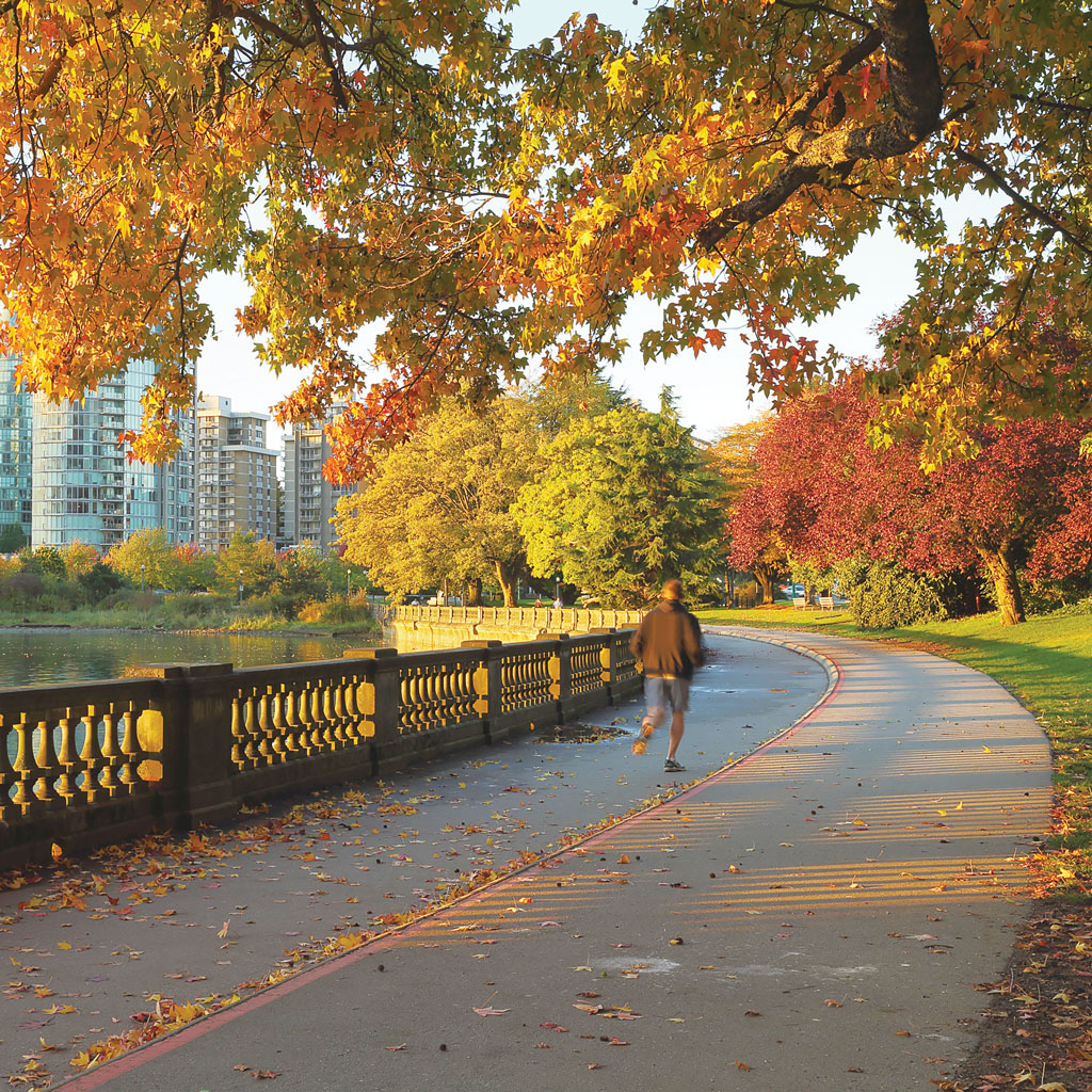 man running in Vancouver's Stanley Park in autumn