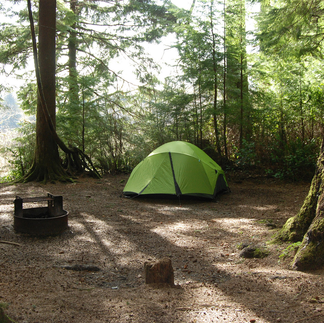 green tent camping in a forest in washington