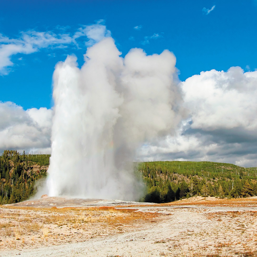 a geyser spewing steam into the air in Yellowstone National Park