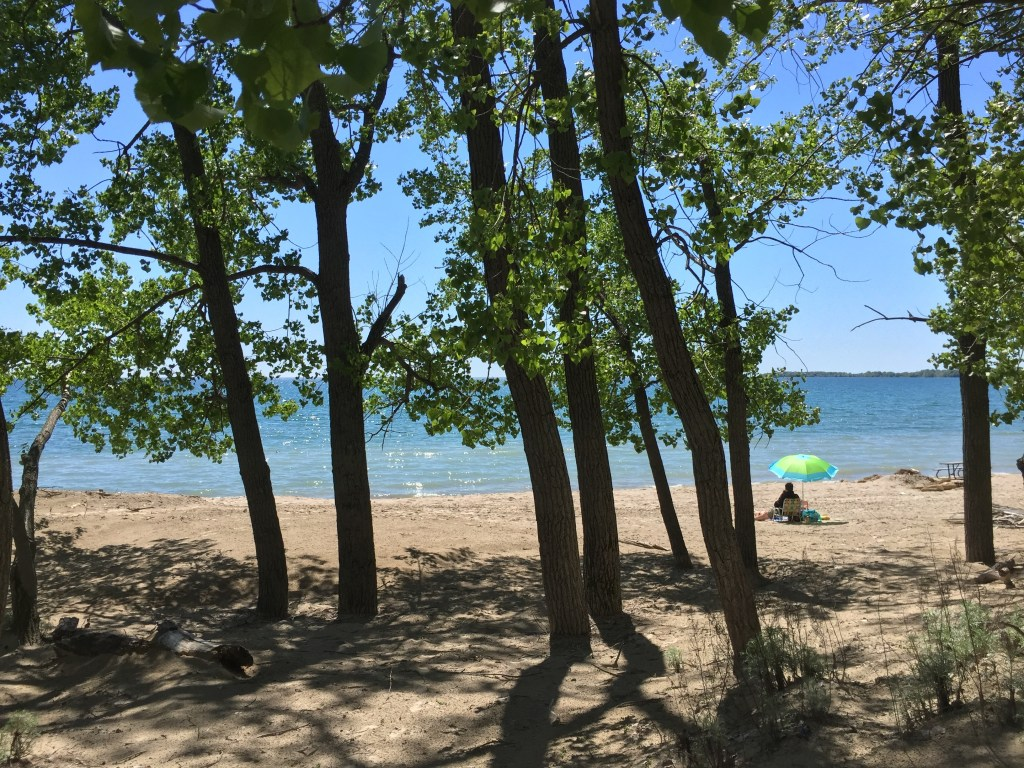 Beach day at Sandbanks Provincial Park