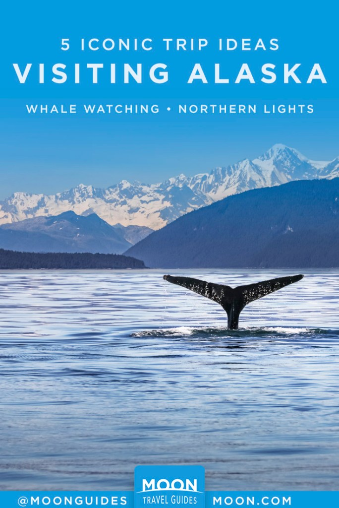 Whale tail in front of snowy mountains. Pinterest Graphic, AK Trip Ideas.