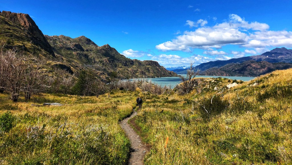 path winding through grass leading to a glacial lake in Patagonia