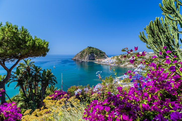 Bougainvillea views on the island of Ischia.