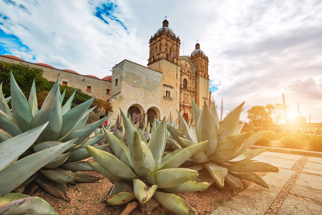 Santo Domingo Cathedral in Oaxaca.
