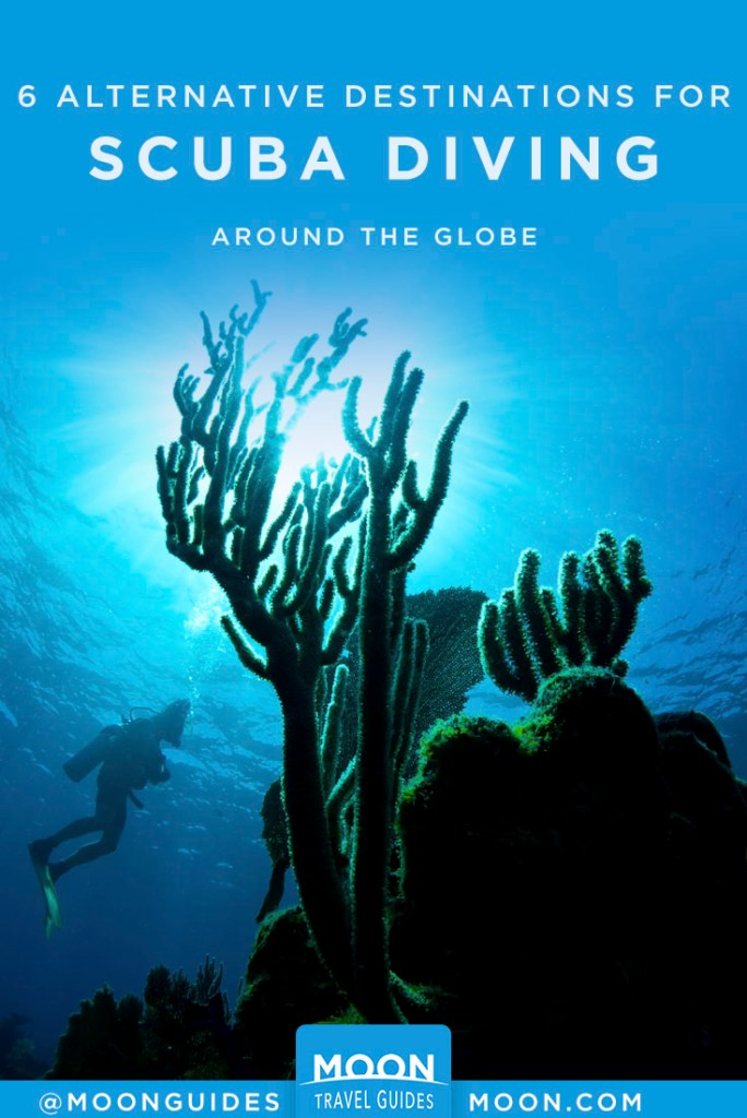 Sunlight streaming from behind coral underwater with diver in background. Pinterest Graphic.