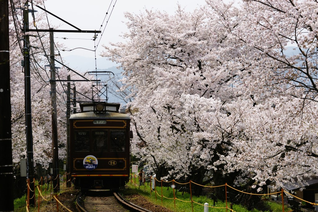 The Randen Line is the last remaining tram line in Kyoto