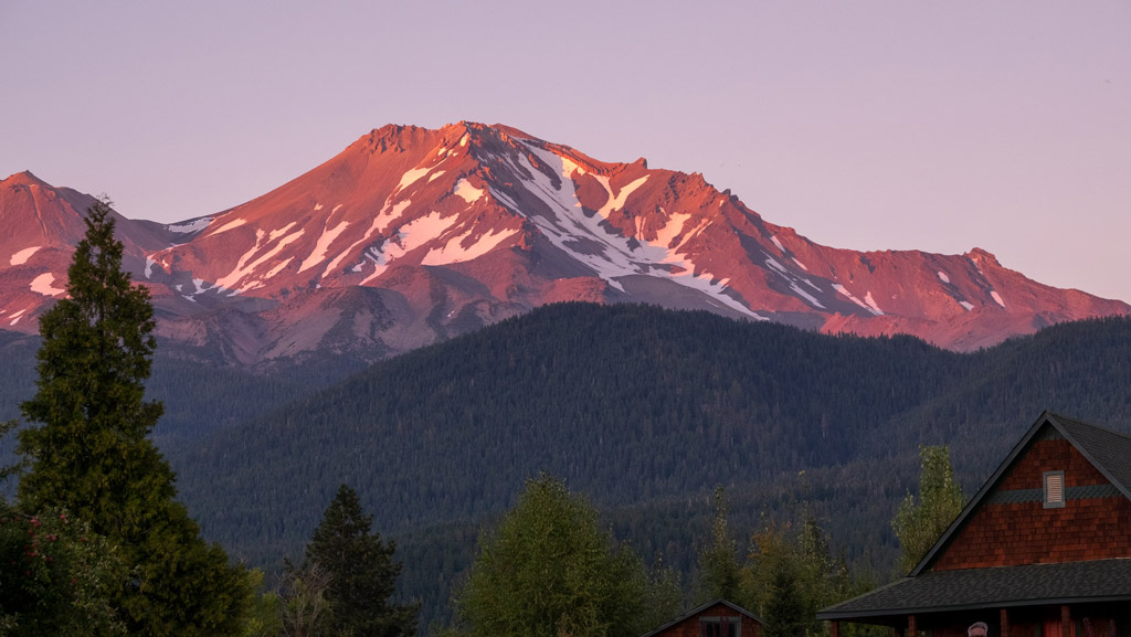 View of Mount Shasta Mountains with trees