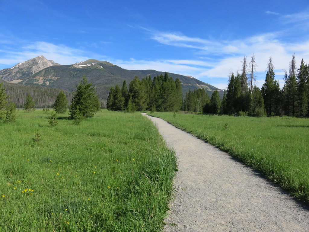 flat concrete path with grass on either side leading to trees and mountains