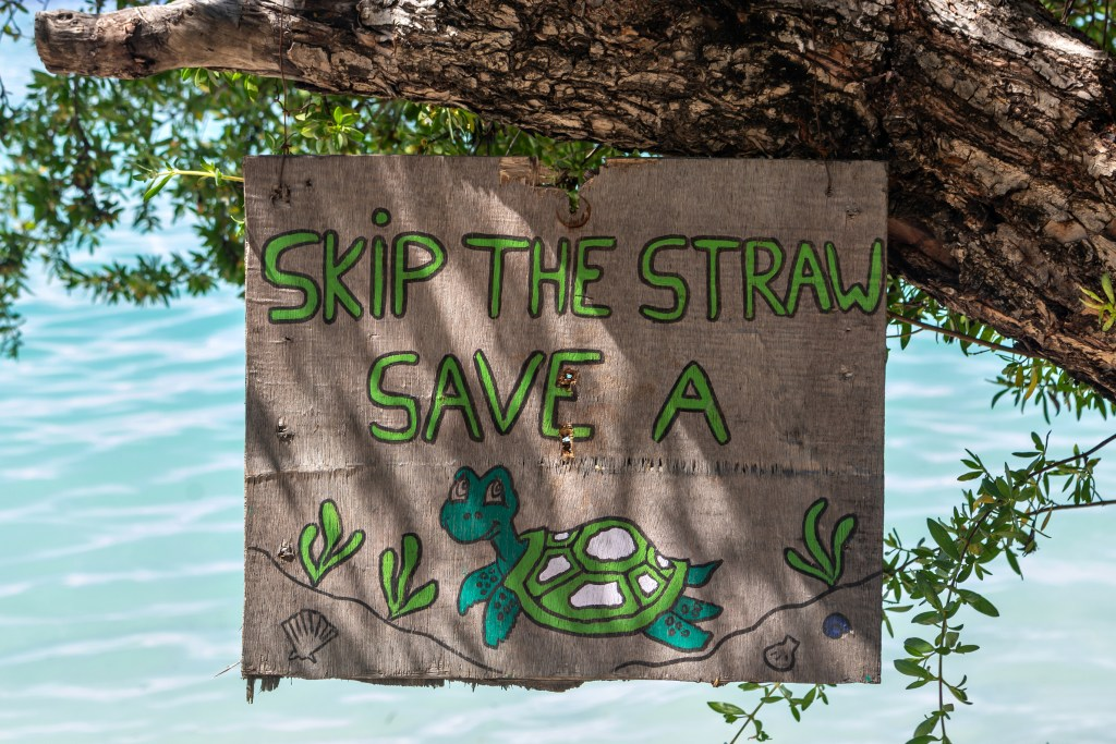 skip the straw, save a turtle sign