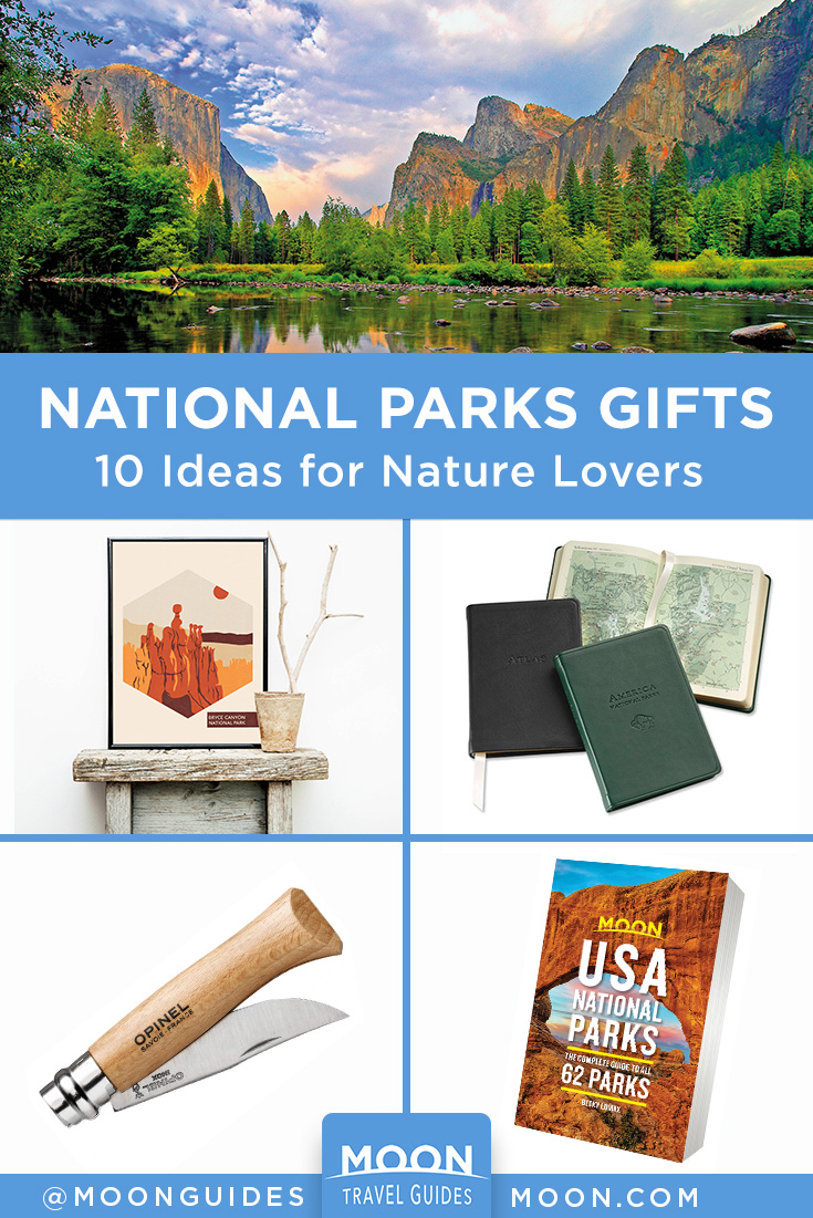 gift guide pinterest graphic with national parks products