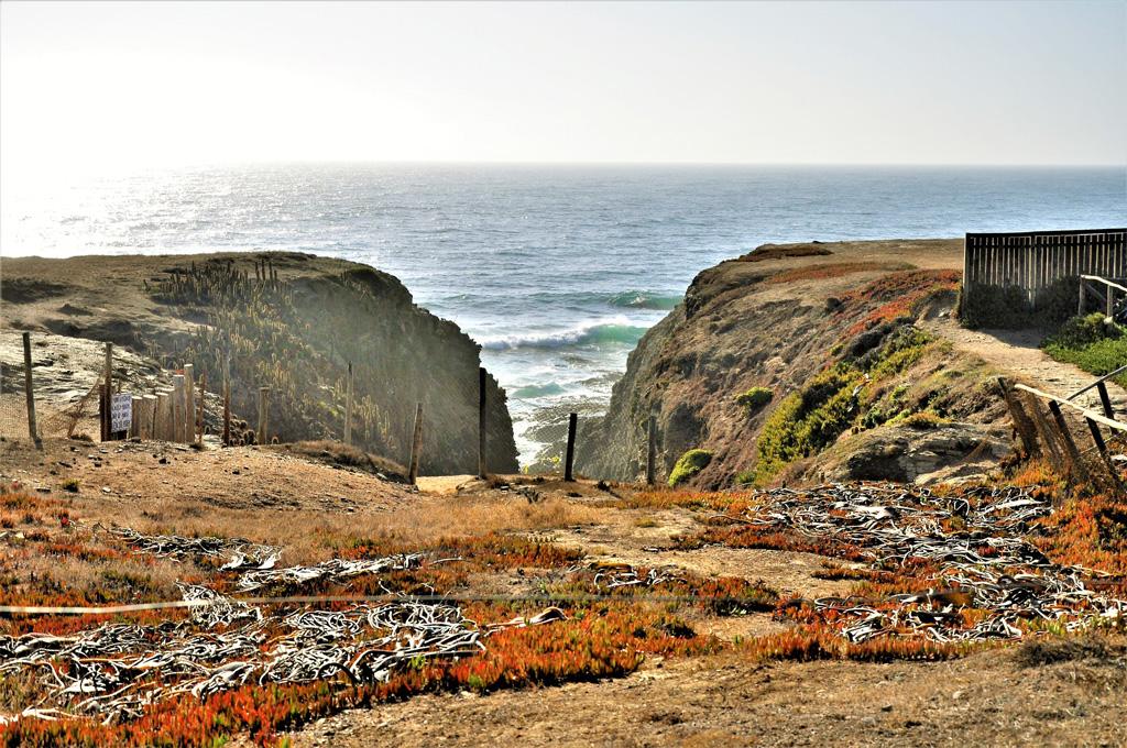 The view near the beach in Punta de Lobos in Pichilemu, Chile on a sunny day