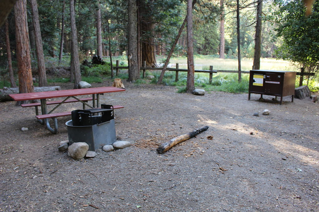 picnic table and fire pit in a wooded campsite on kings canyon
