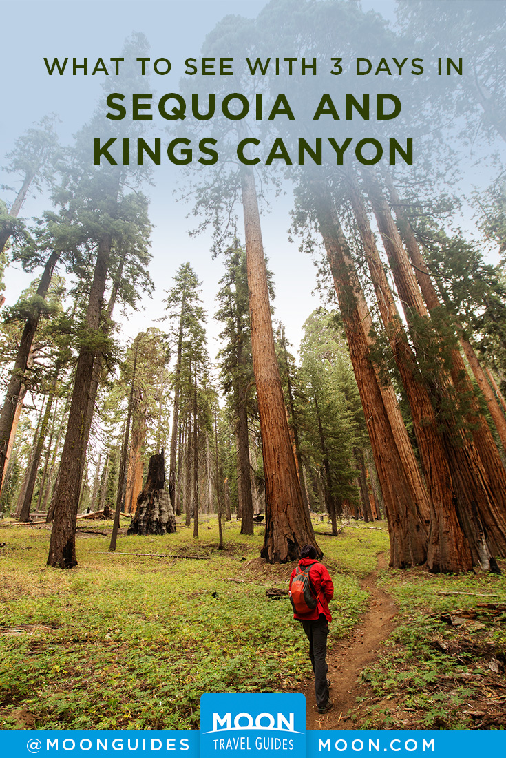 pinterest graphic for sequoia and kings canyon itinerary