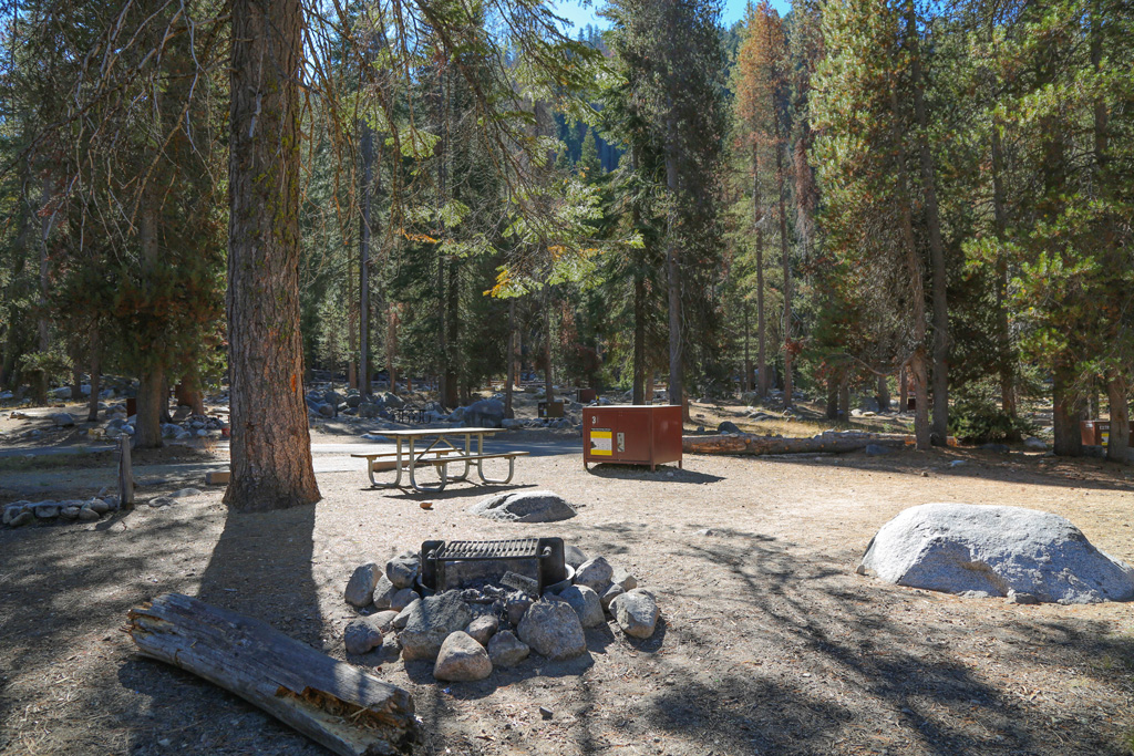 wooded campsite with table and grill over a fire pit in lodgepole