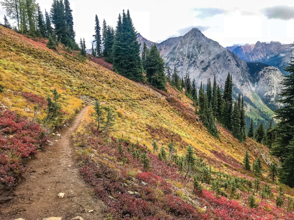 A trail that leads to mountains with fall foliage.