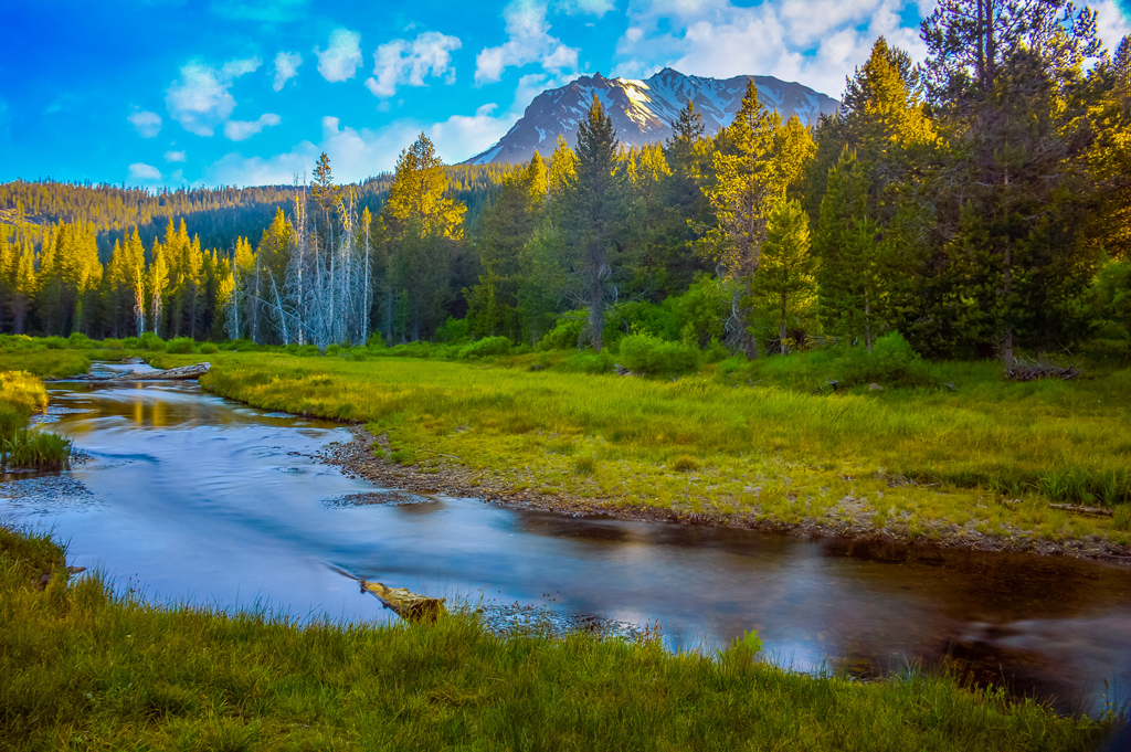 Beautiful creek with Mount Lassen rising above the trees