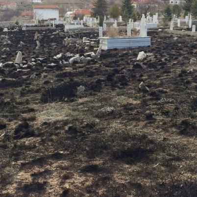 tepekoy mezarlik temizleme calismalari (14)