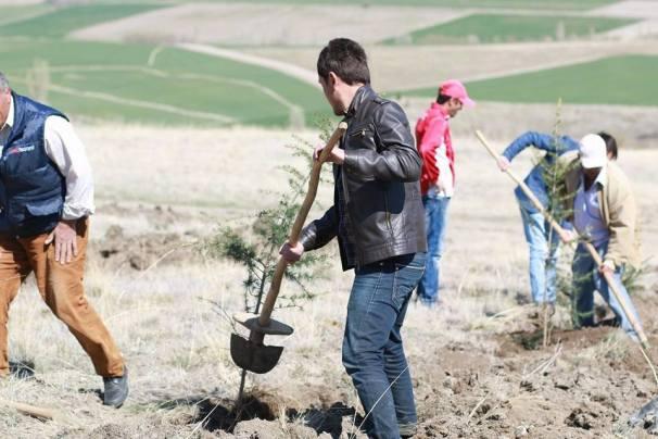 tepekoy Ağaç dikme etkinliğimiz (44)