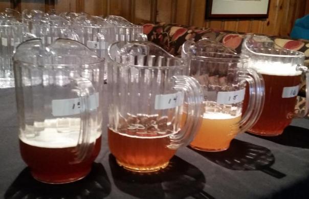 Pine Taverns beers to judge
