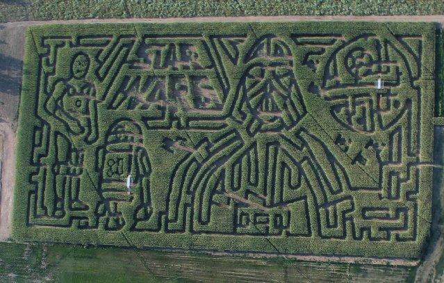 Star Wars corn maze