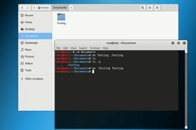 Hide files in Kali Linux