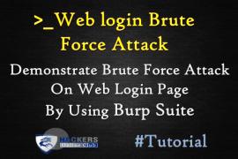 Burpsuite Demonstration Web Login