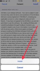 ios 13 beta profile install