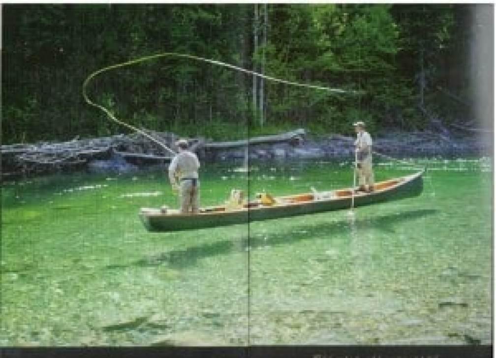 2014 Lodge vissen