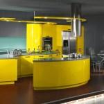 Mustard Yellow Kitchen Ideas Photos Hackrea