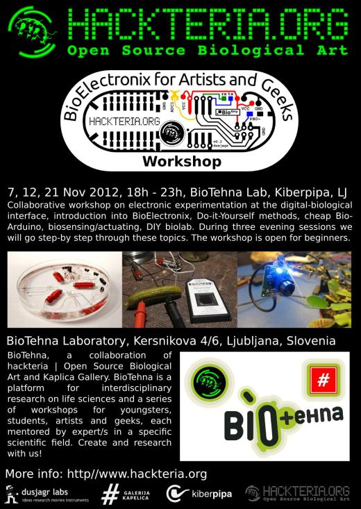 Flyer_BioElectronix_LJ2012_web
